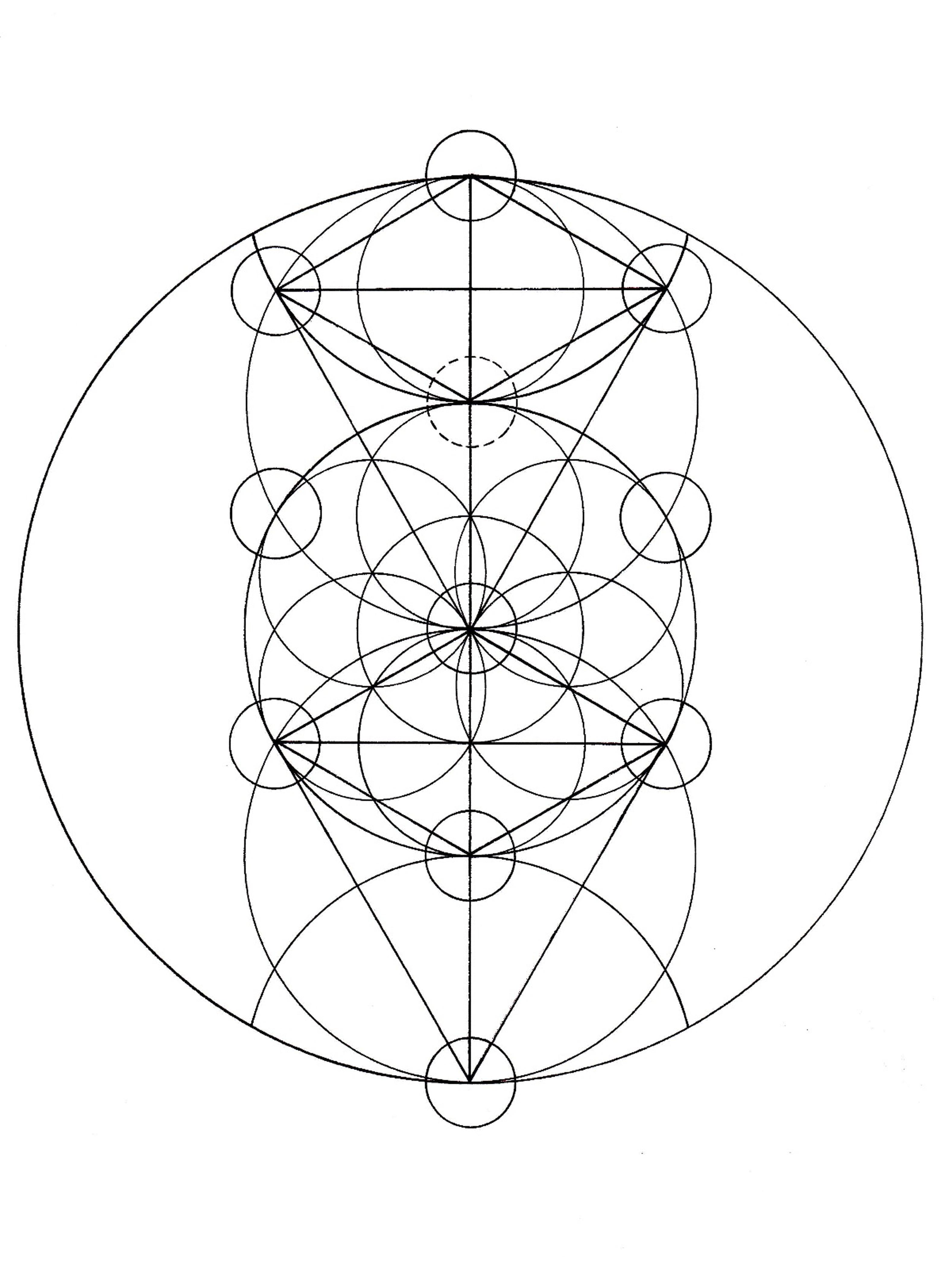 Geometric Life Drawing The Tree of Life