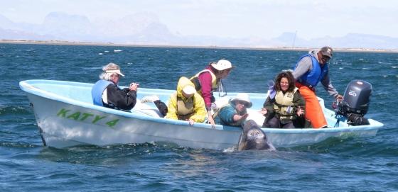 Baja California: St Ignacio Lagoon